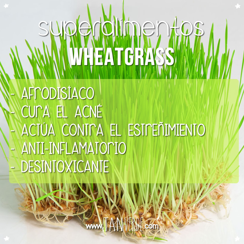 Beneficios del Wheatgrass